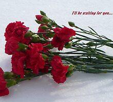 Valentine Hope by Veronica Schultz
