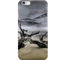 Desolate Beach iPhone Case/Skin