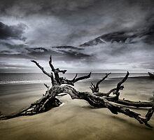 Desolate Beach by TimPalmer