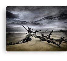 Desolate Beach Canvas Print
