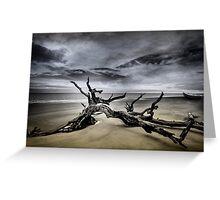 Desolate Beach Greeting Card