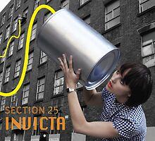Section 25 - Invicta by SUPERPOPSTORE