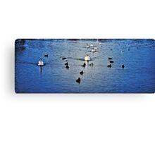 Brickfield Pond  Rhyl  HDR Canvas Print
