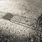 Une ombre dans le jardin du Luxembourg by Julien Tordjman