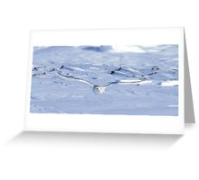Snowy Majesty  Greeting Card