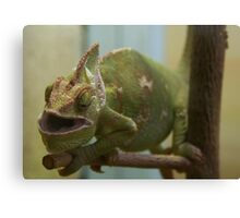 Hungry Reptile Canvas Print