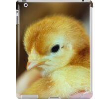 A chick in the hand iPad Case/Skin