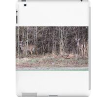 Out of the Brush iPad Case/Skin