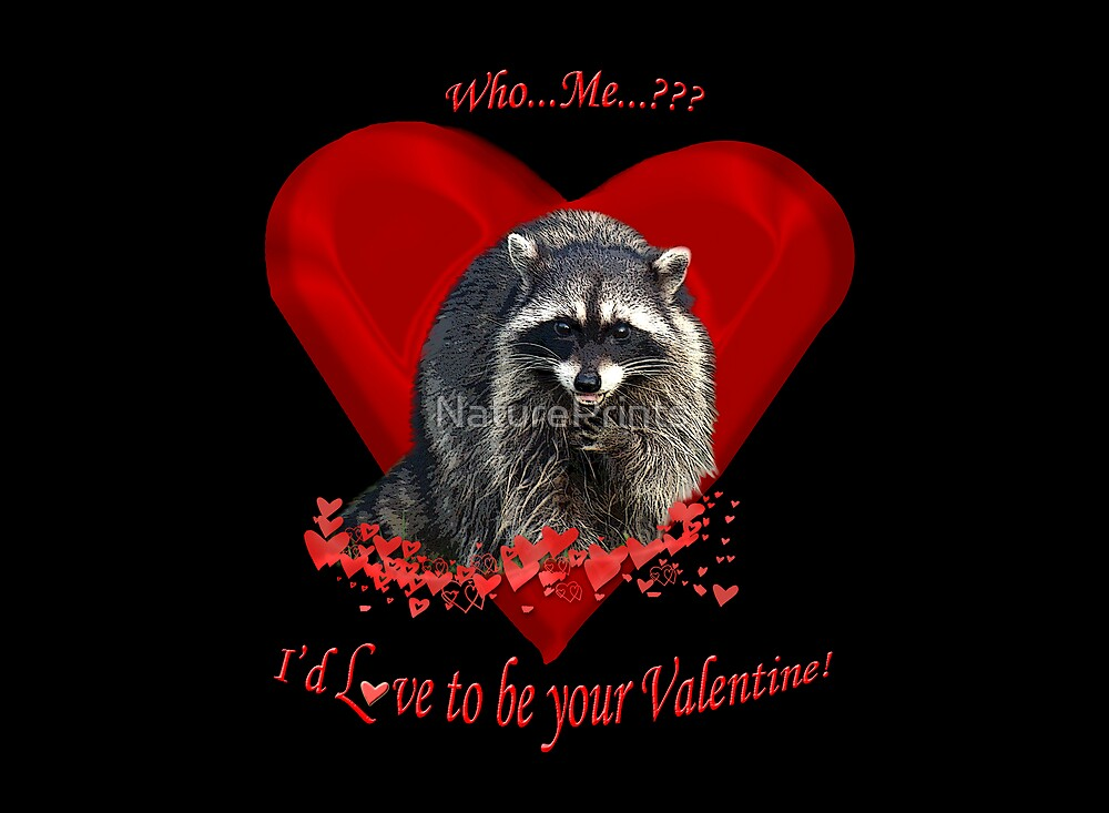 Raccoon Valentine Gifts by NaturePrints