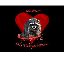Raccoon Valentine Gifts Photographic Print