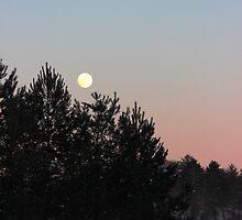 Winter Moonrise by kelseylang