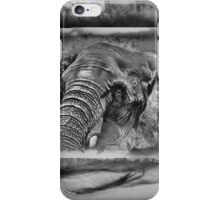 Tusk iPhone Case/Skin
