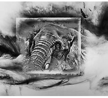 Tusk Photographic Print