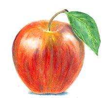 Ripe Delicious Apple by DOMIHA
