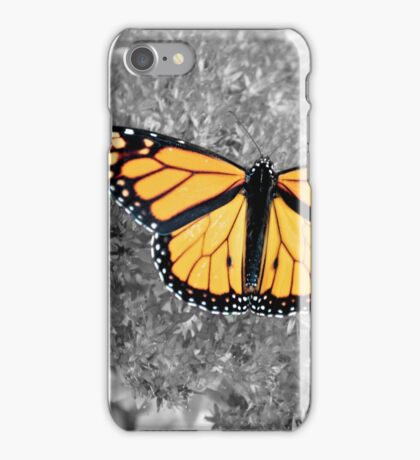 Orange Monarch iPhone Case/Skin
