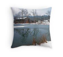 POND,WINTER Throw Pillow
