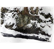 Stream Bank in Winter Poster