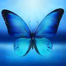 Blue Butterfly by Cliff Vestergaard