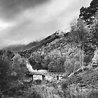Stormy Glen Affric by kernuak