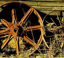 Wheels by Ginger  Barritt