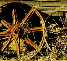Wheels by Ginger  Barritt