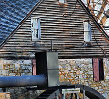 Mill House by capizzi
