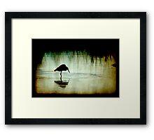Down by the Bayou 2 Framed Print