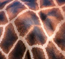 Giraffe Pattern by PsiberTek