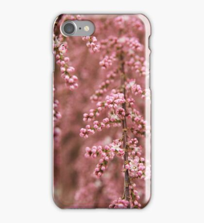 Tiny pink buds - 2011 iPhone Case/Skin