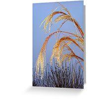 Golden Grass Greeting Card