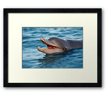 Smiley Framed Print