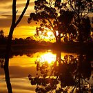 Reflected Gold by Clive