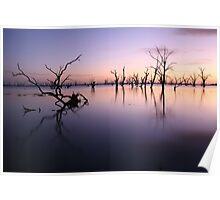 Lake Victoria Pre-Dawn, Australia Poster