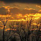 Fire In The Sky by DottieDees
