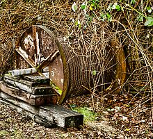 Cable Spool by Shannon Beauford