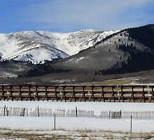 Behind The Snow Fence by Katagram
