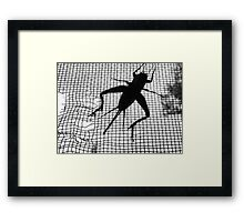 Trapping the serenader Framed Print