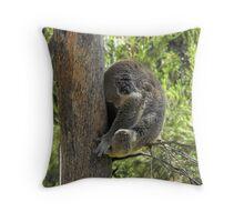 A Sleeping Bear Throw Pillow