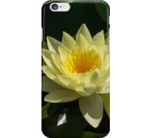 Waterlily in Yellow iPhone Case/Skin