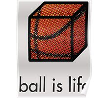 Ball.is.life Poster