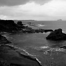 from dunbar by gashmore