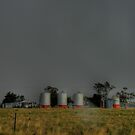 Wilber Shearing Shed & Silos by pedroski