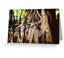 Fig tree surrounding a metal fence. Brisbane botanic gardens. Qld. Australia Greeting Card