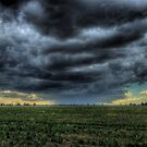 Wilber Storm 002 by pedroski