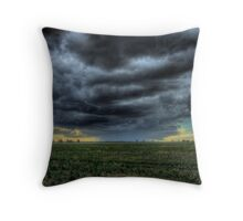 Wilber Storm 002 Throw Pillow