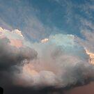 Wilber Storm 004 by pedroski