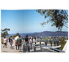 Bugs At The Blue Mountains Lookout Poster