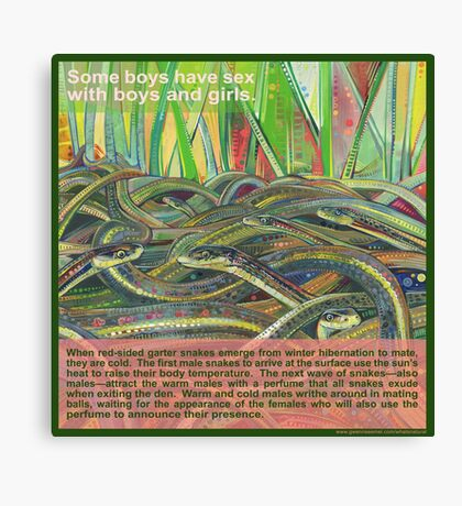 Love-in (Red-sided garter snake) Canvas Print