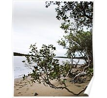 Nudgee Beach, Brisbane QLD Poster