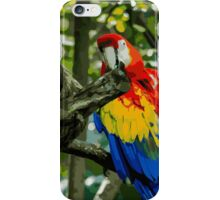 Pair of Parrots iPhone Case/Skin